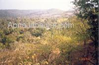 bandhavgarh-hill2